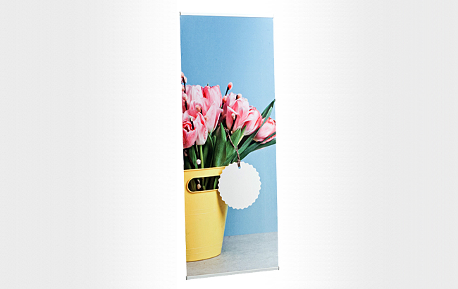 basic-l-banner-display-00